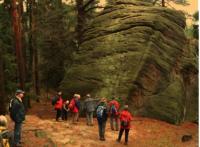 Von Dipps durch die Dippser Heide nach Oelsa Führer der Tour: Jürgen Dittrich